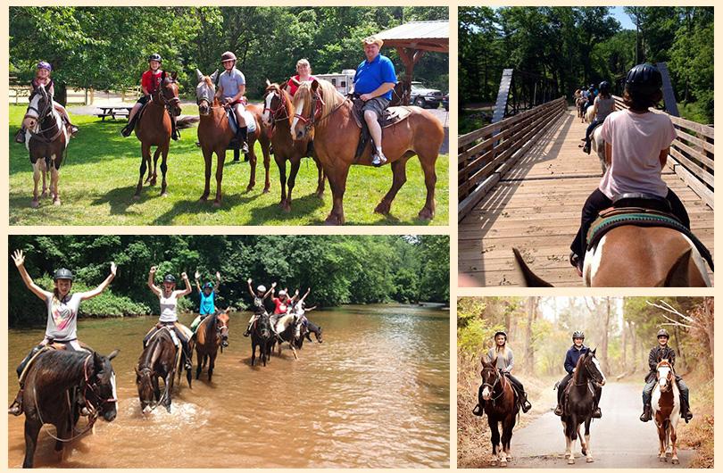 Red Buffalo Ranch - Trail Rides